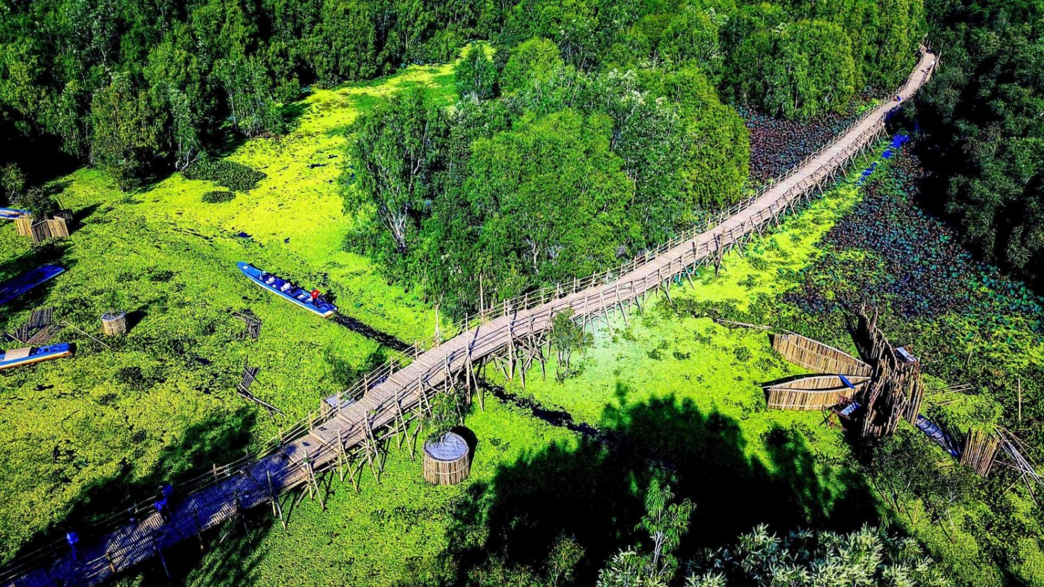 Tra Su Bamboo Bridge - The Longest Bamboo Bridge In Vietnam